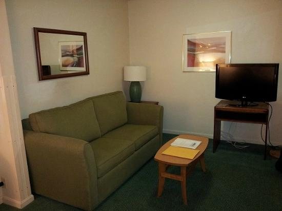 Extended Stay America - Akron - Copley - West: sleeper sofa