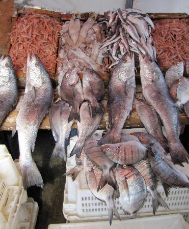Cité Portugaise : Mercato di pesce nel porto