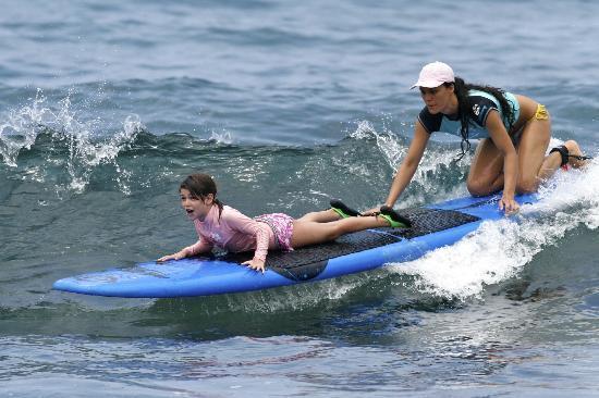 Surfer Bear Hawaii Surf Lessons : having fun