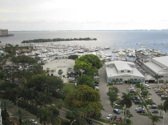 Courtyard Miami Coconut Grove: View from 1806