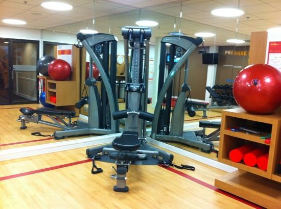 Sheraton Milwaukee Brookfield Hotel: Universal gym in strength-stretching room