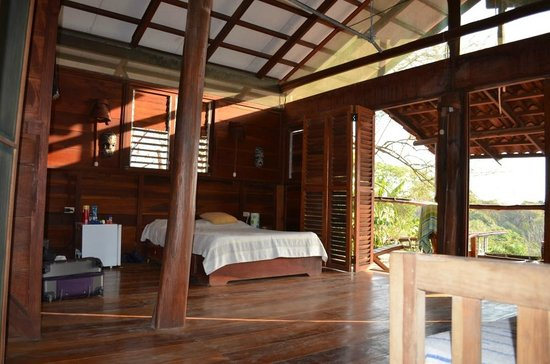 Funky Monkey Lodge: Suite