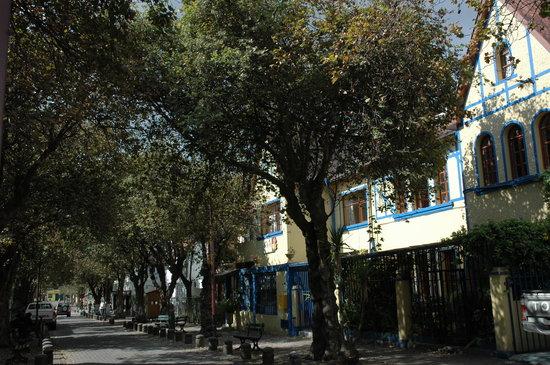 Posada Del Maple: Calle y casa del hostal, patrimonio de Quito.