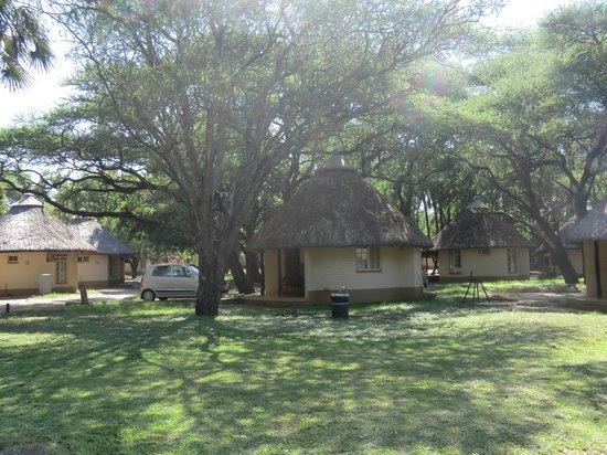 Game drives at Phalaborwa Gate in Kruger National Park: Letaba Rest Camp Cottage
