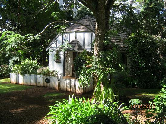 Lisson Grove: Baden