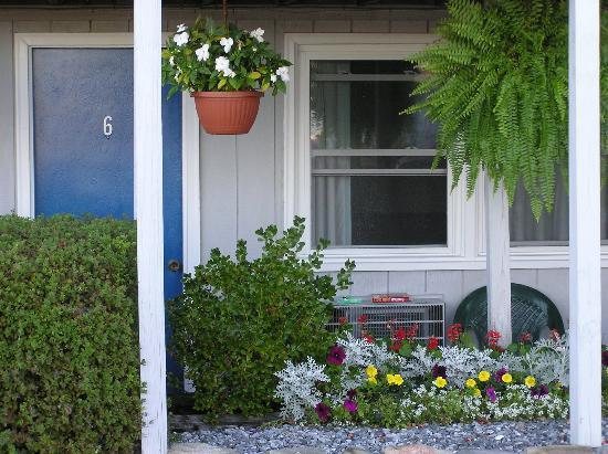 Sea Whale Motel: Beautiful hanging plants everywhere.