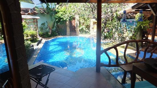 Pool at Villa Naga Maya private area of owner.