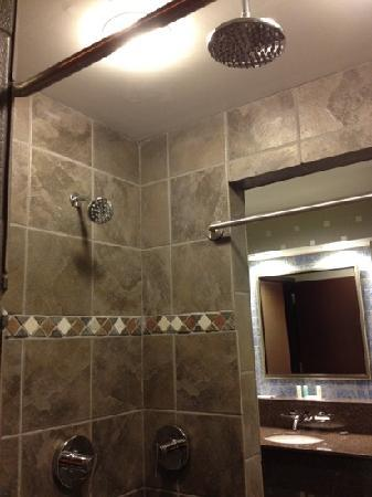 Comfort Suites: double shower.....so relaxing!