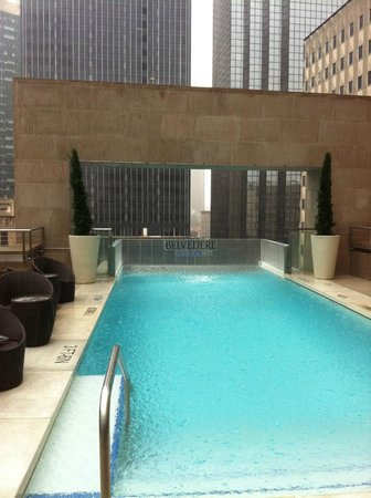 The Joule, Dallas: The pool. . .