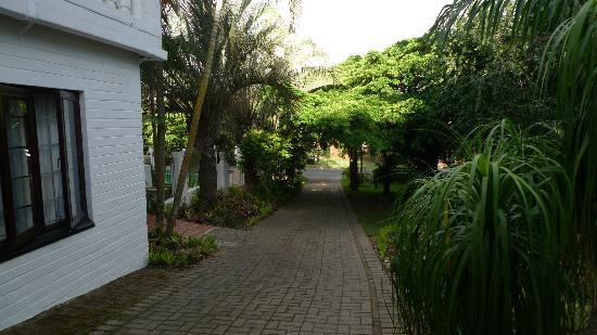 St. Lucia Wetlands Guesthouse: The grounds