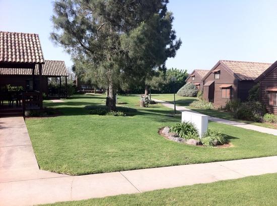 Peace Vista Country Lodge (Mitzpe Hashalom): morning