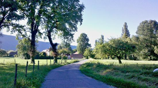 Saint-Jorioz, Fransa: Пейзаж в окрестностях Сен-Жорио