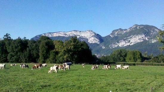 Saint-Jorioz, Frankrig: Вид на горы из Сен-Жорио