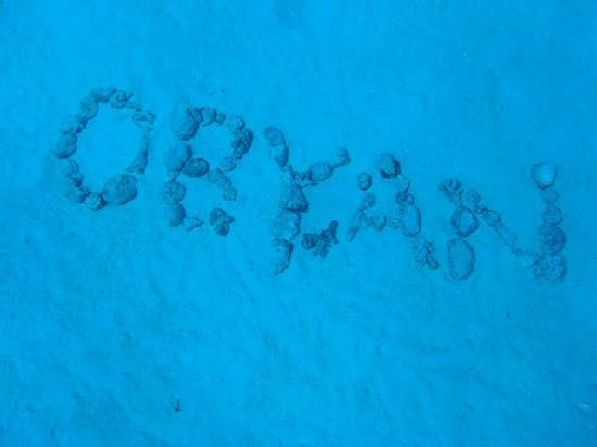 Obyan Beach : こんなイキなことをしてくれるダイバーさんがいらっしゃいました