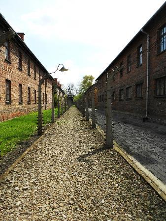 Auschwitz-Krakow Tours : Auswitch