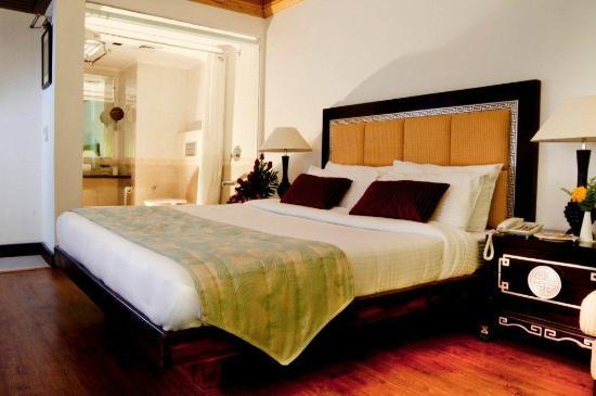 Citrus Manali Resorts : A View of a Suite at Manali Resorts, Manali...