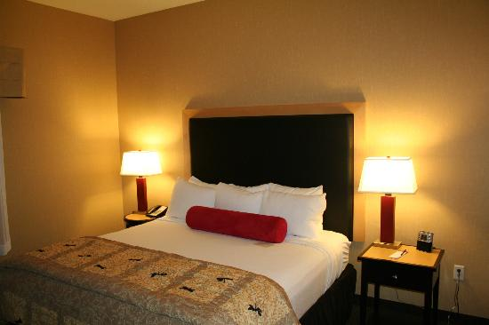 Cambria hotel & suites Denver International Airport: King bed.