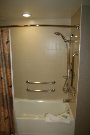 Cambria hotel & suites Denver International Airport: Great showers.