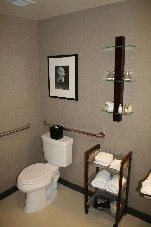 Cambria hotel & suites Denver International Airport: Bathroom (1).