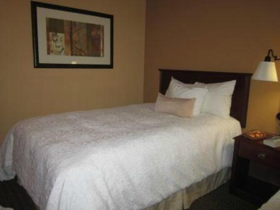 Hampton Inn Lagrange near Callaway Gardens: Room with 2 full size beds--clean--pleasant