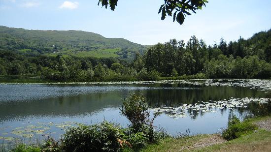 Barcdy Caravan & Camping Park: Llyn Tecwyn Isa, a short walk from Barcdy