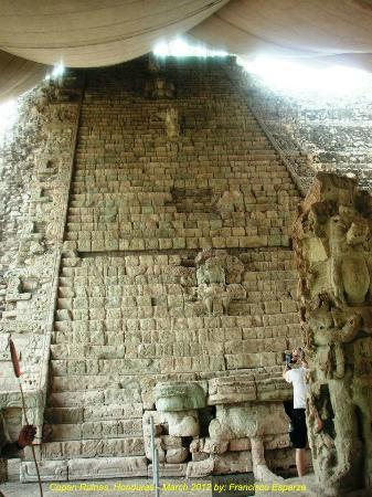 Hieroglyphic Stairway: Hieroglyphic Staircase & Stela M