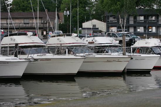 Harbor View Condos : Lake Michigans #1 port For Salmon Fishing!