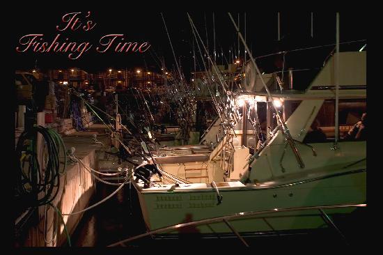 Harbor View Condos : Great Sport Fishing