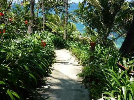 Tuko Beach Resort: Garten