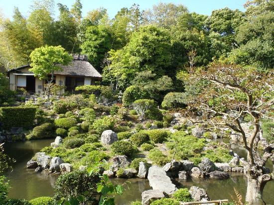 Toji-in Temple: 芙蓉池と茶室・清漣亭