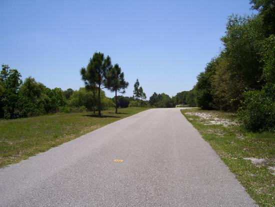 The Upper Tampa Bay Trail 2020 All You Need To Know