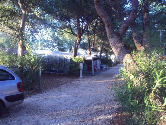 Grotta dell'Acqua Villaggio Turistico: camping