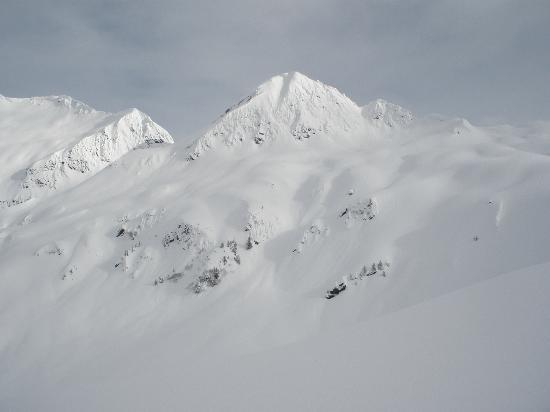 The terrain we accessed with Alaska Powder Descents Heli-Skiing