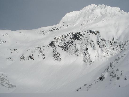 View from Mount Roberts, the terrain we accessed with Alaska Powder Descents Heli-Skiing