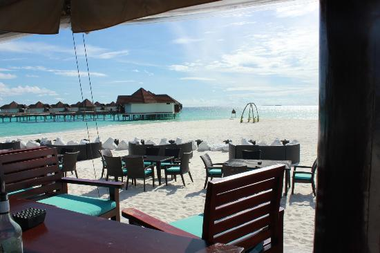 Robinson Club Maldives: Sanset bar