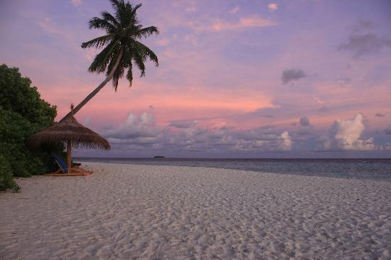 Robinson Club Maldives: Beauty of the island