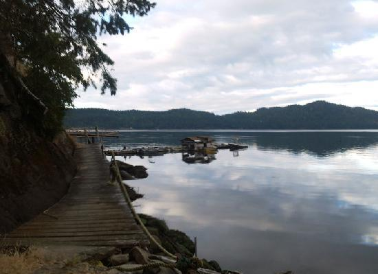 Breezy Bay Bed and Breakfast: the dock at Breezy Bay beach