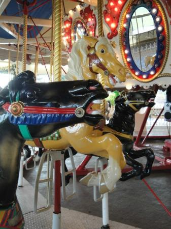 Red River Zoo Carousel