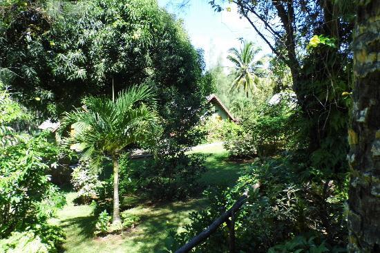 Atiu Villas: lush gardens