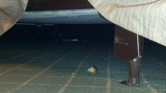 The Hotel Ithaca: Crumbs under the bed.