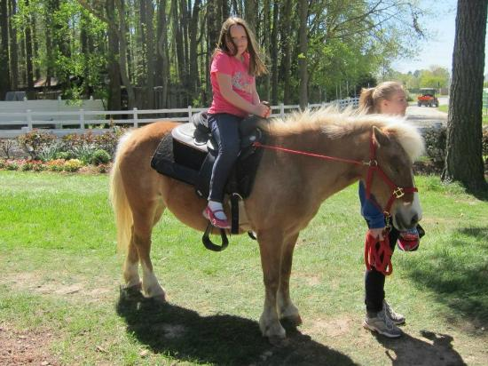 Hunt Club Farm Pony Rides