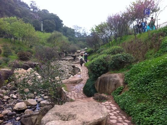 Yunding Mountain: ravine 1
