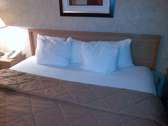 Baymont Inn & Suites Marinette : Good bed, nice pillows!