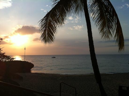 Casa Marina Reef : sunset in sosua