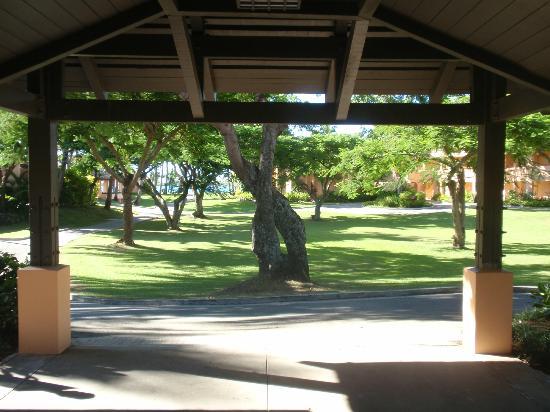 Sheraton Fiji Resort: walkway
