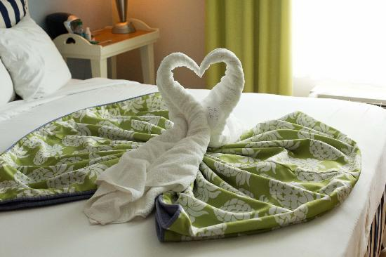Hotel Indigo Sarasota: second day of towel art