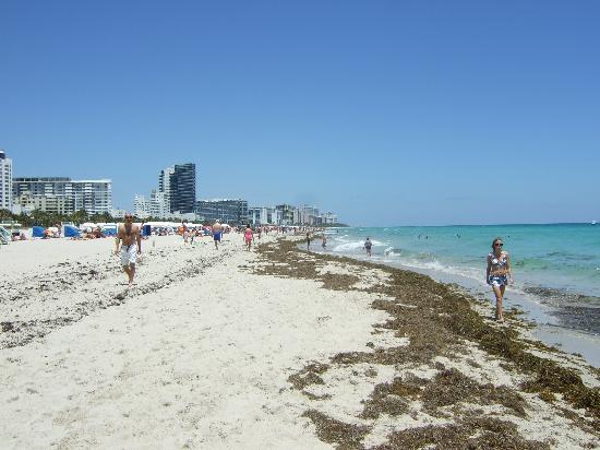 South Beach Miami Clubs Thursday