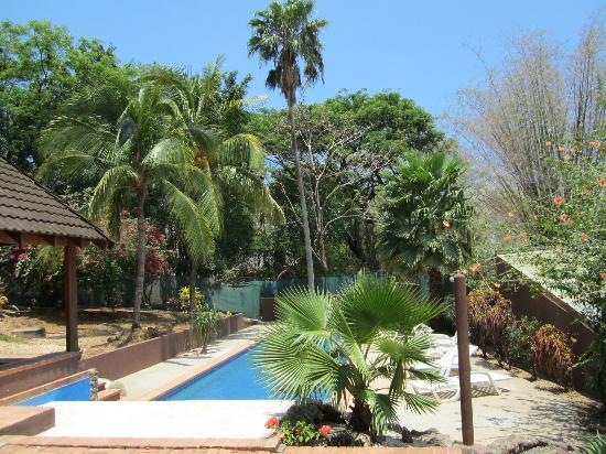 Hotel Nahua: The pool