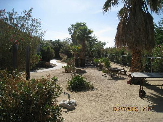Sunnyvale Garden Suites Hotel - Joshua Tree National Park: hotel grounds