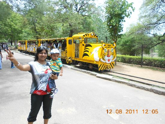 Mini Train Picture Of Nehru Zoological Park Hyderabad Tripadvisor
